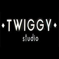 «TWIGGI» studio